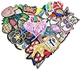 WZT 50pcs/lot Assorted Iron-on or Sew-on Sequin Embroidered Patch Motif Applique Set