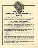 Rules In A Bouvier des Flandres' House