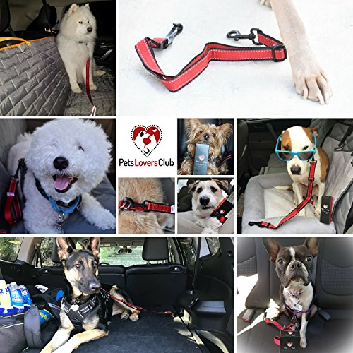 PetsLovers Dog Seatbelt – Latch Bar Attachment 25in
