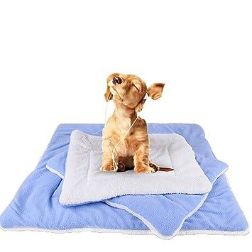 Pet Online Pet - aire acondicionado pad dispone de cuatro estaciones de pelo dorado de pequeño