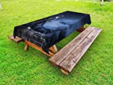 Lunarable Cat Outdoor Tablecloth, Photo of a Cat Sitting on a Wall Looking at The Sky Mysterious Night Time Trees Clouds, Decorative Washable Picnic Table Cloth, 58 X 120 inches, Dark Blue