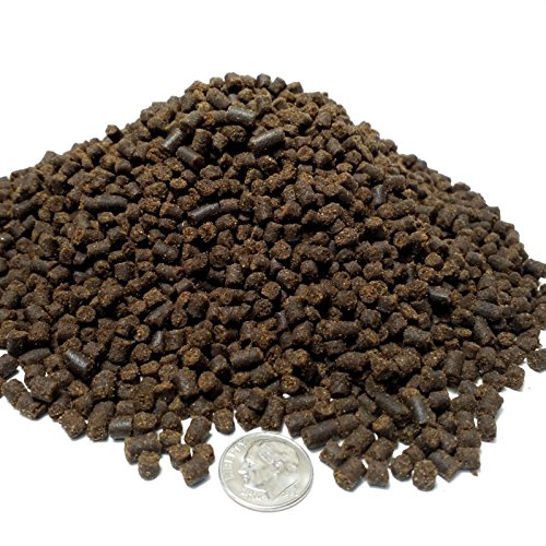 Pellet Soft Large - Aquatic Foods Inc. Rangen 1/8