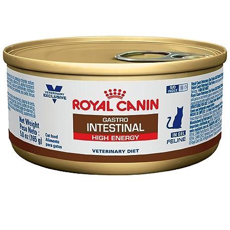 ROYAL CANIN Feline gastrointestinal (alta energía) comida de gato en lata 24/5.8