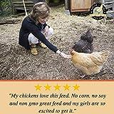 Scratch and Peck Feeds - Organic 3-Grain Scratch