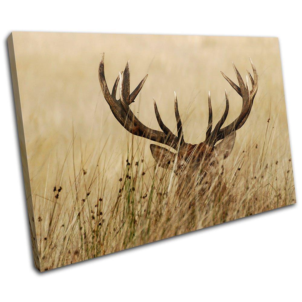 Bold Bloc Design Stag In Grass Animals 90x60cm Large XL Canvas Art ...