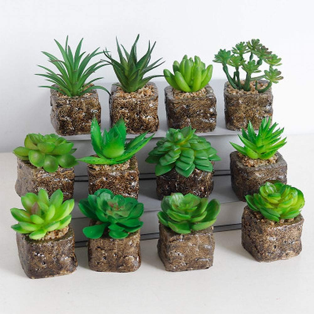 Sel-More 12 stili mini artificiali piante succulente piante in vaso decorativo cactus cactus piante finte, 1 Pack (random) random