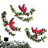 Collections Etc Cardinal & Pine Solar Outdoor Christmas Decoration