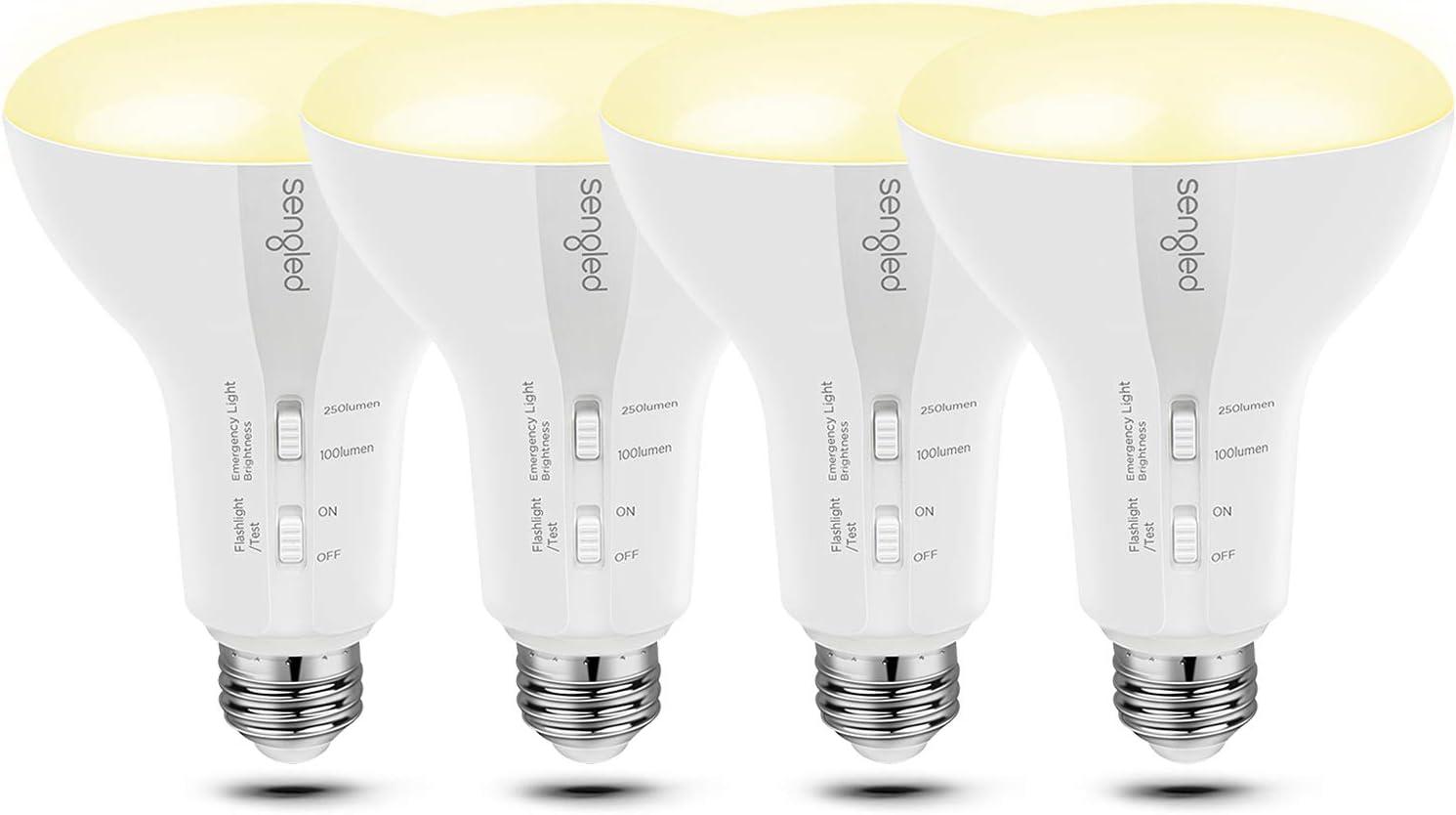 battery backup light bulb