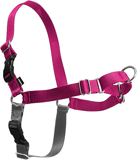 PetSafe Easy Walk No Pull Dog Harness   Chewy