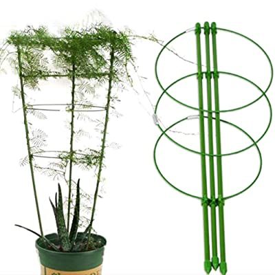 6pcs Gardening Climbing Plant Support Garden Rings Trellis Tomato Veg Stand