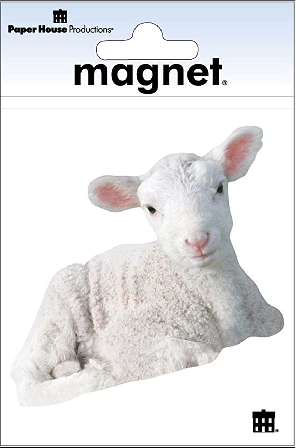 "Goat  refrigerator magnet 3 1//2 x 3  1//2/"""