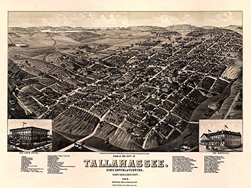 Antiguos Maps Bird's Eye View MAP of The City of Tallahassee Florida Leon County Circa 1885 - Measures 18' high x 24' Wide (458mm high x 610mm Wide)