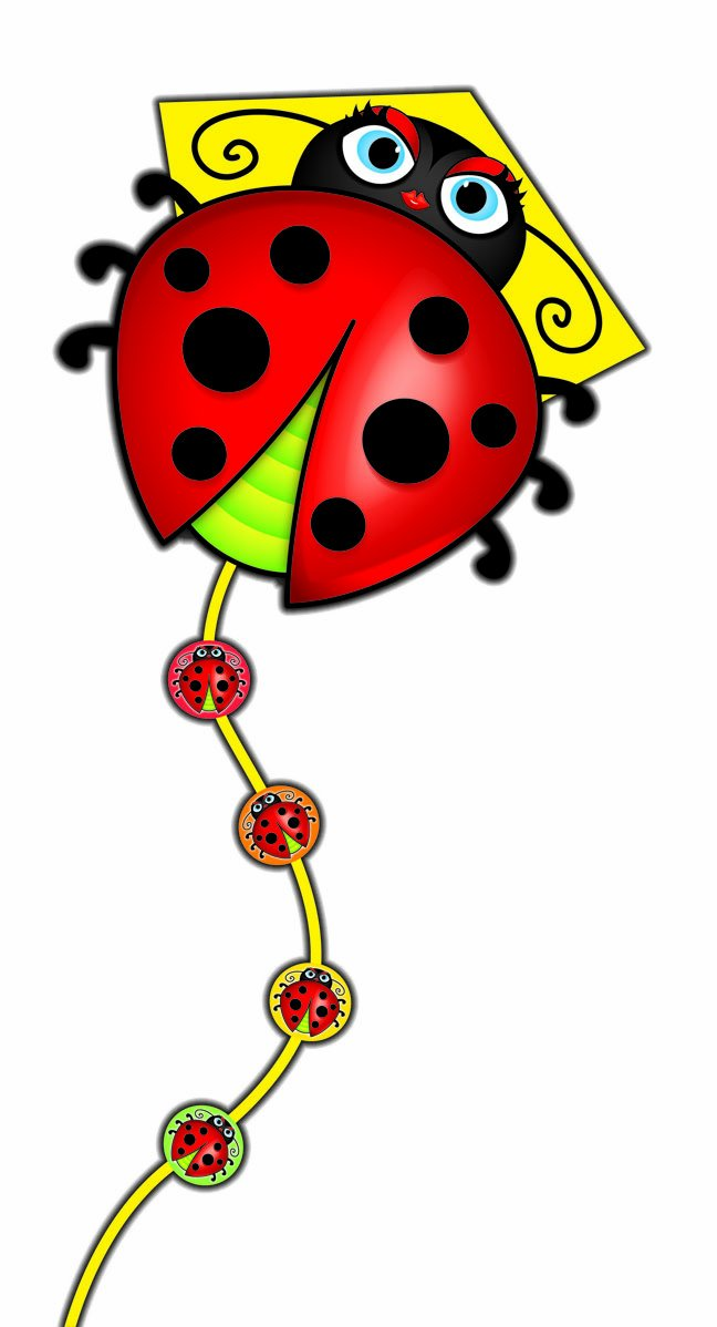 SkyDelight Deluxe Nylon Diamond Kite - Lady Bug