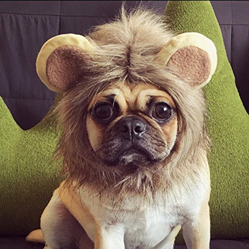 Lion Mane for Cats,BIOSTON Lion Mane Wig Costume for Small Dogs,Kittens,Small Slim Pets,Festival Party Fancy Hair Clothes for Puppy(Brown) -