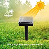 BECH'S CLASSIC SHARP Solar Rodent Repeller with Best Design, Outdoor Waterproof Mouse Rodent Animal Repeller Ultrasonic Solar Powered - Outdoor Animal Repeller, Solar Ultrasonic Rat Repeller