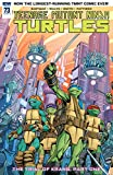 Teenage Mutant Ninja Turtles #73
