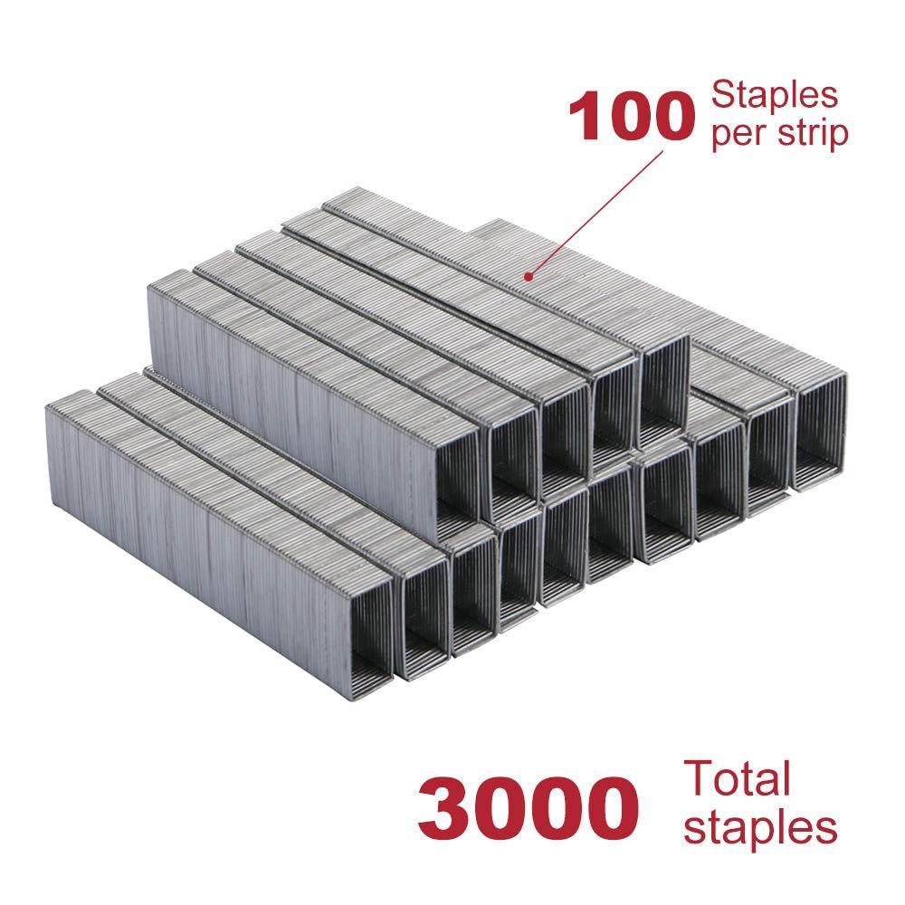 Eagle Agrafes 3-pack 1000//Box 3000/pcs au total Standard 1//10,2/cm Longueur de jambe