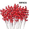 TERUNPU 30 Pack Red Berries Christmas Red Berry Stems for Christmas Tree Ornaments, Crafts, Holiday and Home Decor