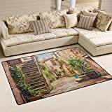 WOZO Alley In Old Town Pitigliano Tuscany Italy Cityscape Area Rug Rugs Non-Slip Floor Mat Doormats for Living Room Bedroom 60 x 39 inches Review