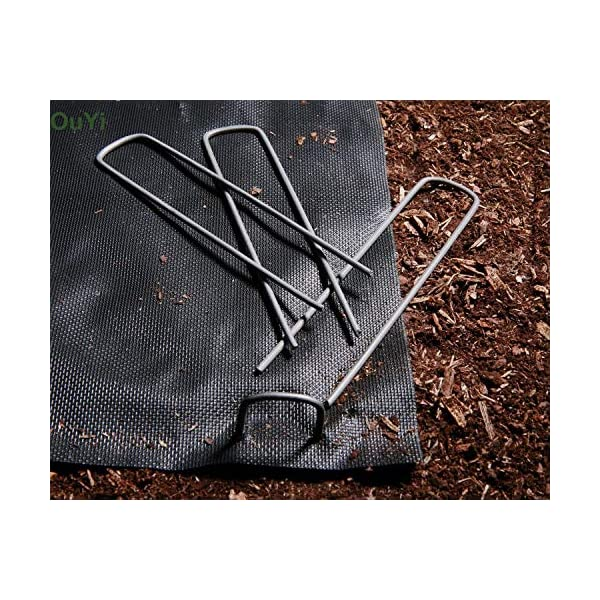 100 Picchetti Ancore a Terra - 150 x 25 x 3,0 mm - graffette da giardino picchi di terra di acciaio per il tessuto… 5 spesavip