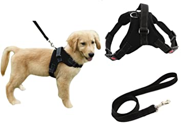 Review Heavy Duty Adjustable Pet Puppy Dog Safety Harness with Leash Lead Set Reflective No-Pull Breathable Padded Dog Leash Collar Chest Harness Vest with Handle for Small Medium Large Dogs Training Walking
