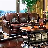 Princeton - Tri-Tone Burgundy Leather Sofa by Coaster