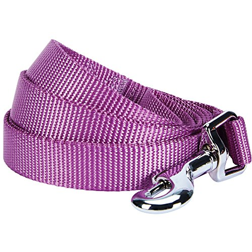 Blueberry Pet 19 Colors Durable Classic Dog Leash 5 ft x 3/8, Violet, X-Small, Basic Nylon Leashes for Puppies