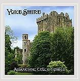Awakening Celtic Spirits