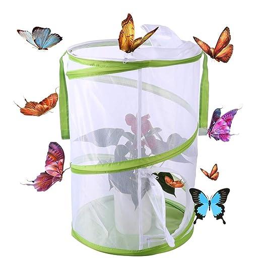 2 Pack de Jaula de Mariposa Plegable Insecto y Mariposa Hábitat ...