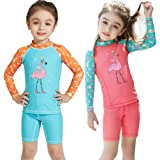 YIFEIKU Co.,Ltd. Kids Swimsuits Long Sleeves Wetsuit Short Two Pieces 2-8 Year for Girls UV Protection Suits