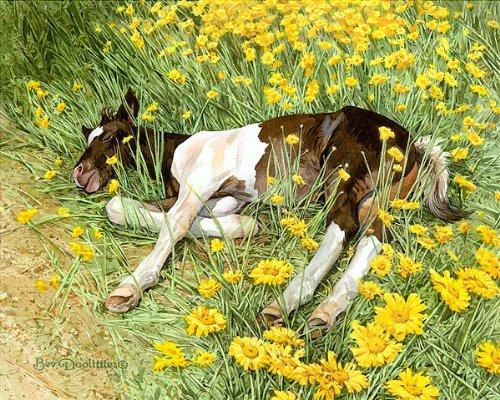 Bev Doolittle - Spring Break - Limited Edition Art - Limited Home Nature Edition Art