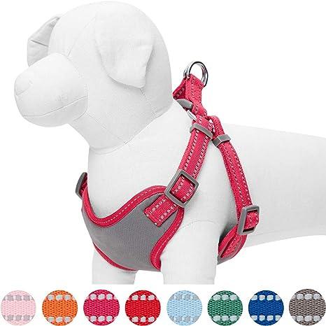 Umi. by Amazon - Pastel - Arnés tipo chaleco para perros ...