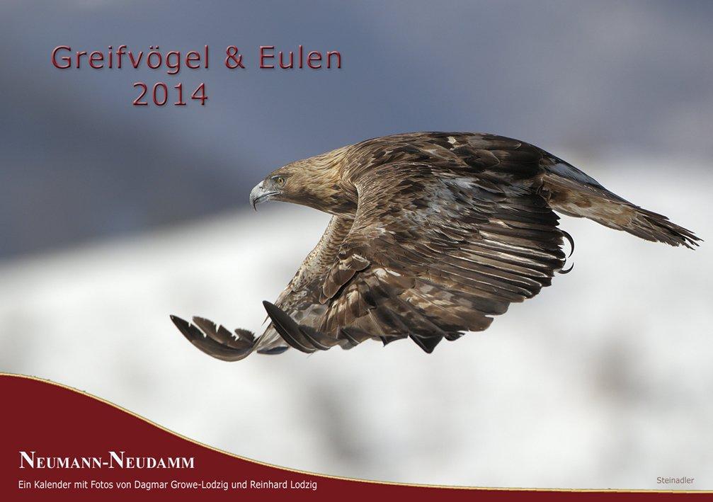 Greifvögel & Eulen 2014