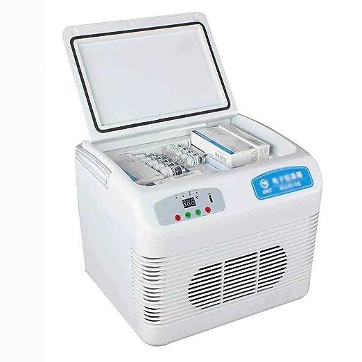 Mini refrigerador portátil - Caja de Temperatura Constante ...