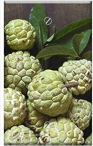 Single-Gang Blank Wall Plate Cover - Fruit Custard Apple Organic Fresh Green Tropical