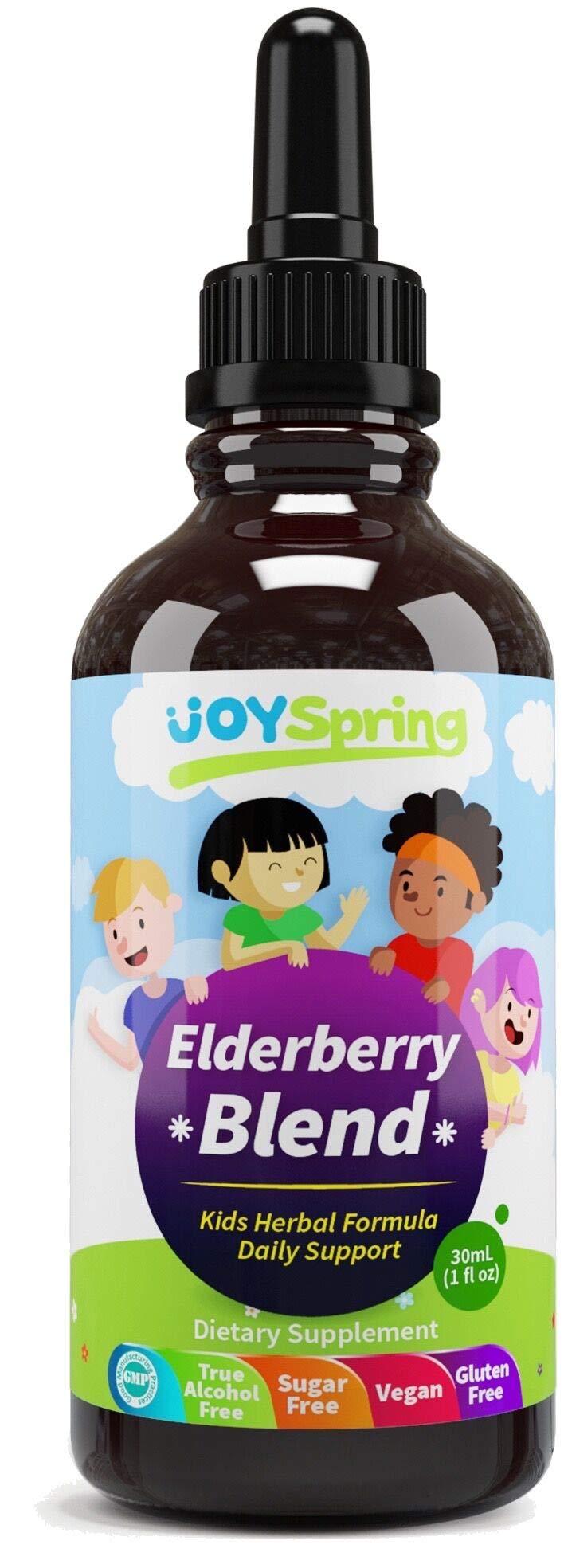 Organic Elderberry Syrup for Kids - Best Natural Kids Cold Medicine, Pure Elderberry Blend for Sickness Relief, 3X Stronger Vegan & Sugar-Free Formula to Strengthen Immune System (4 oz)