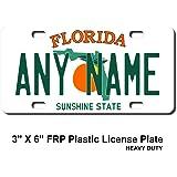 Smart Blonde LP-6005 Florida Novelty Metal License Plate