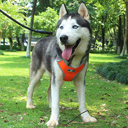Z ZHIZU Dog Harness No Pull Dog Harness Adjustable Outdoor Dog Vest Soft Dog Harness Front for Dogs Easy Control for Small Medium Large Dogs (L, Orange)