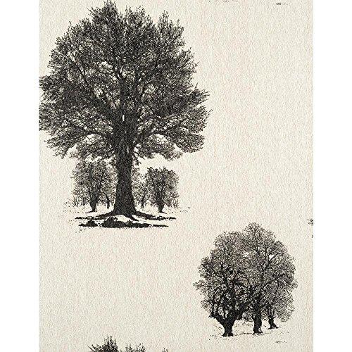 (York Wallcoverings ET2057SMP Enchantment Arboretum Wallpaper Memo Sample, 8-Inch x 10-Inch, Pearl Bisque, Ebony Black )