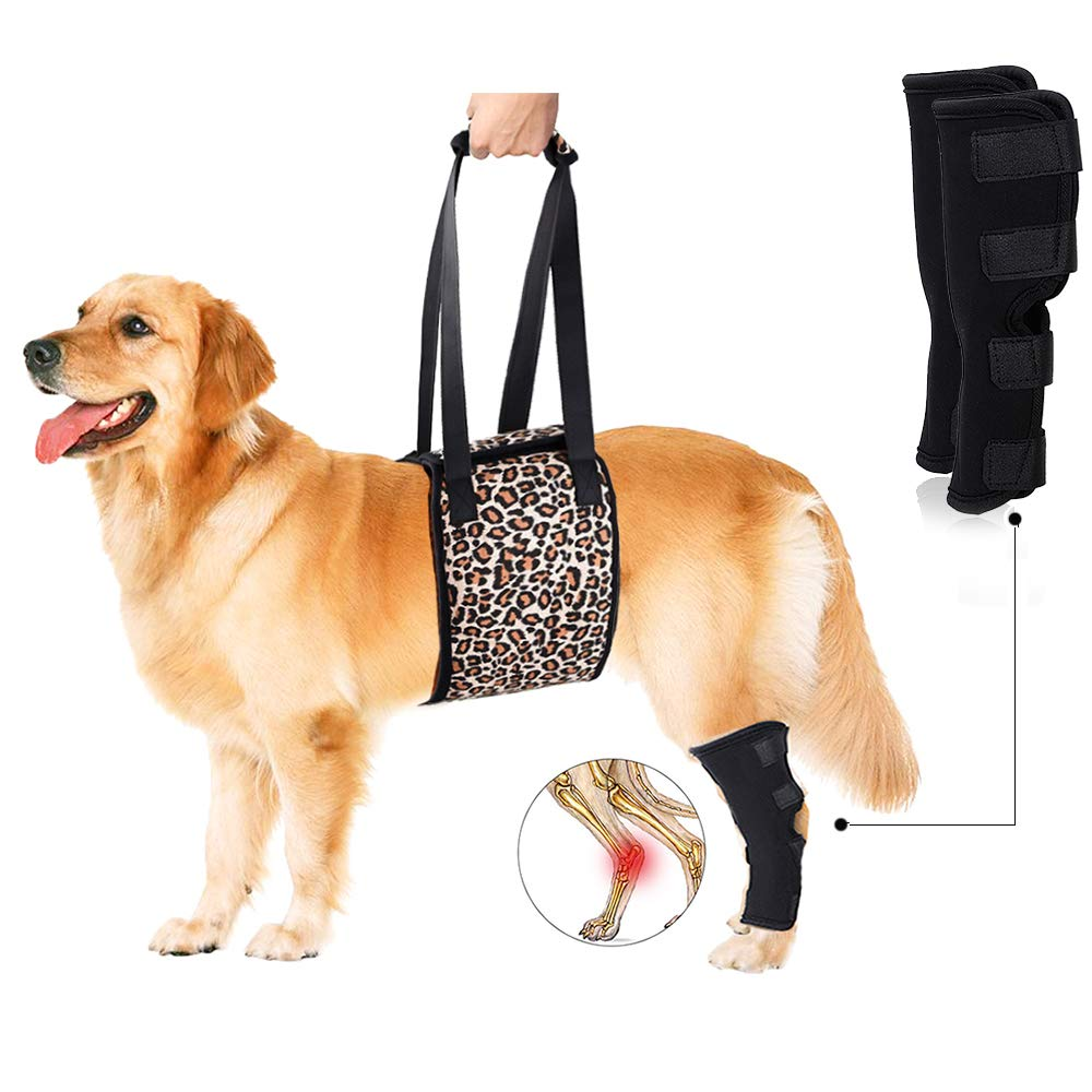 Leopard X-Large Leopard X-Large Petsidea Dog Lift Harness Sing with 1pc Dog Rear Leg Brace Support Help Old Dogs for Hip dysplasia, Rehabilitation, Joint Injuries (X-Large, Leopard Print)
