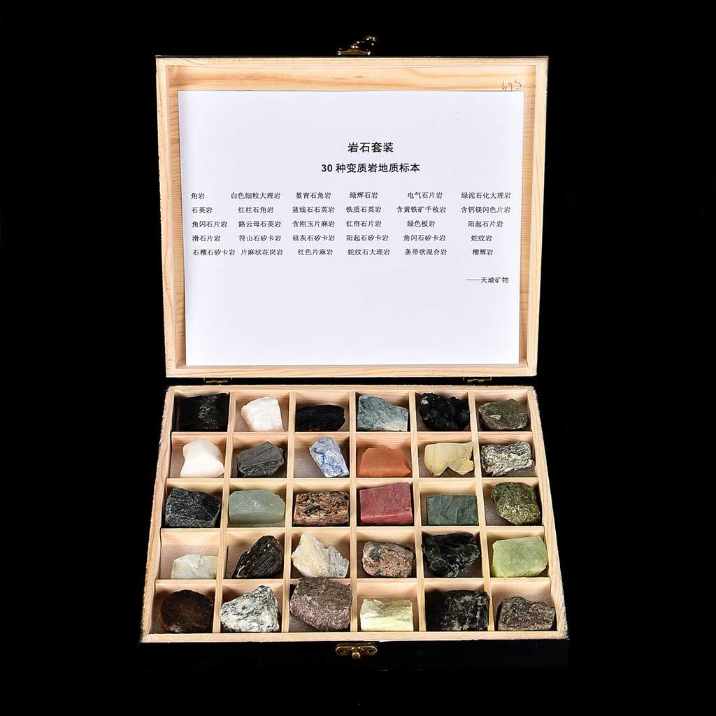 KESOTO 30x Coelcción de Minerales y Rocas Metamórfica ...
