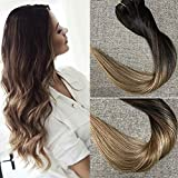 Full Shine 18 inch Balayage Clip in Human Hair Extensions Remy Ombre Clip in Hair Extensions 120g 10 Pcs Per Set Pastel Hair Color #1B Fading to #6 and #27 Honey Blonde