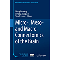 Micro-, Meso- and Macro-Connectomics of the Brain (Research and Perspectives in Neurosciences) (English Edition)