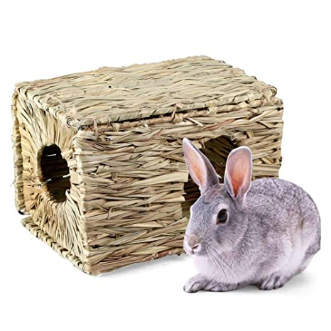 MoO1deer - Pajita de Hierba Tejida para Mascotas pequeñas, Conejo ...