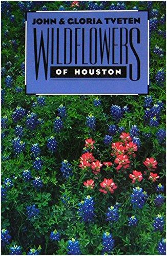 Wildflowers of Houston