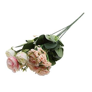 Amazon.com: monkeyjack cabezal 7 Grande Abrir Rosas. Seda ...