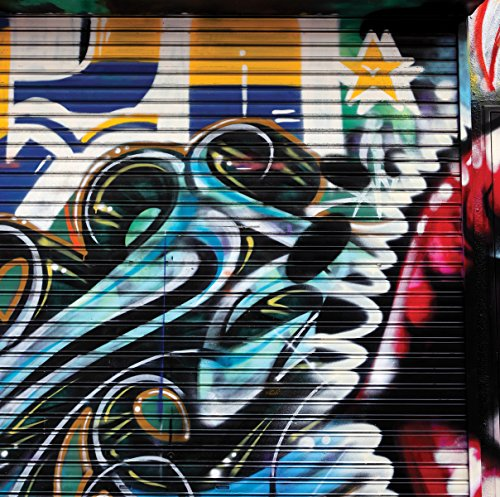 JP London SQM0085PS Graffiti Garage Urban Punk Door Peel and Stick Removable Wall Decal Sticker Mural, 6' High by 6' Wide by JP London