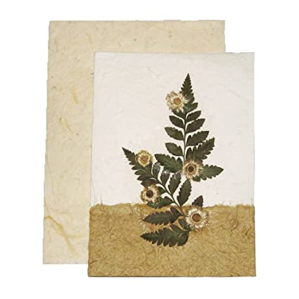 Amazon handmade pressed flower greeting card designs make handmade pressed flower greeting card designs make great birthday anniversary and wedding gift card m4hsunfo