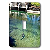 Sandy Mertens Hawaii Travel Designs - Shark in Pond by Restaurant at the Resort on the Big Island of HI - Light Switch Covers - single toggle switch (lsp_232749_1)