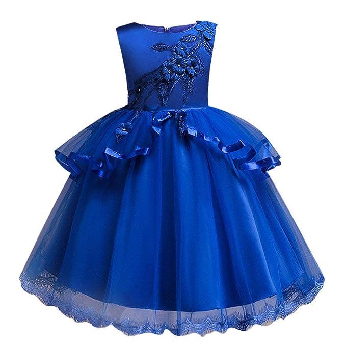 e29810600 Vestido de Fiesta Princesa Niña Bebé Vestido Bordado de niñas Falda Boda  Princesa Pettiskirt Bautizo de Cumpleaños Bautismo Vestido de Banquete de  Boda ...